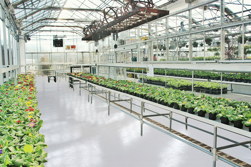 Greenhouse Cannabis Flooring - Leamington Ontario